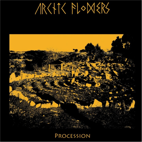 Arctic Flowers - Procession