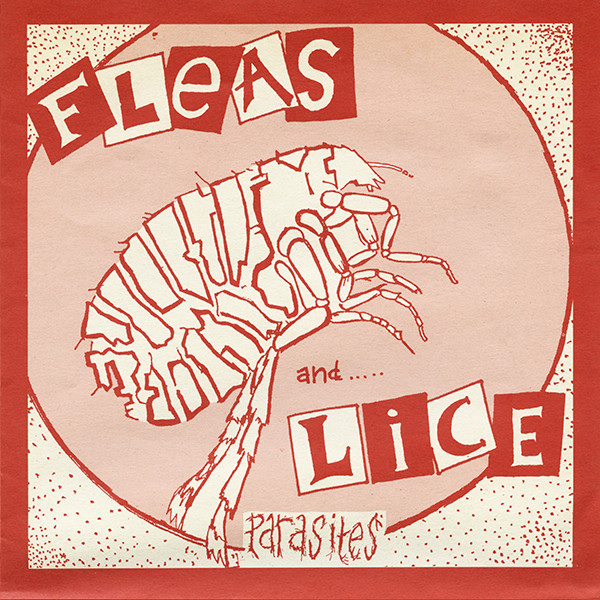 Fleas And Lice - Parasites