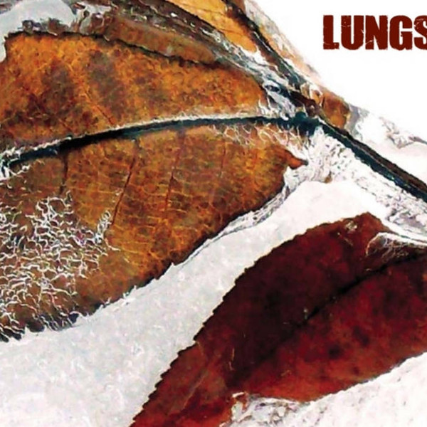 Lungs - Demo