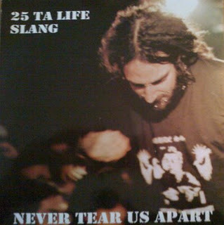 Slang - Never Tear Us Apart