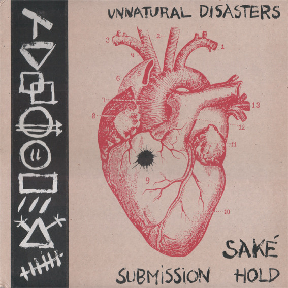 Submission Hold - Unnatural Disasters