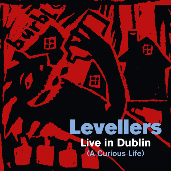 The Levellers - Live In Dublin
