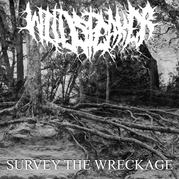 Wildspeaker - Survey The Wreckage
